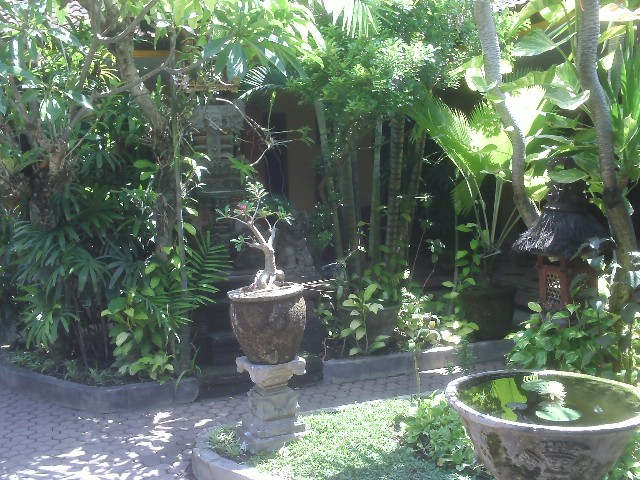Puri Mango Guest House - Sanur Bali